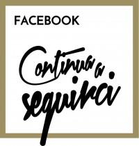 box_social_seguici