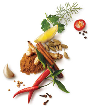 spezie-spices